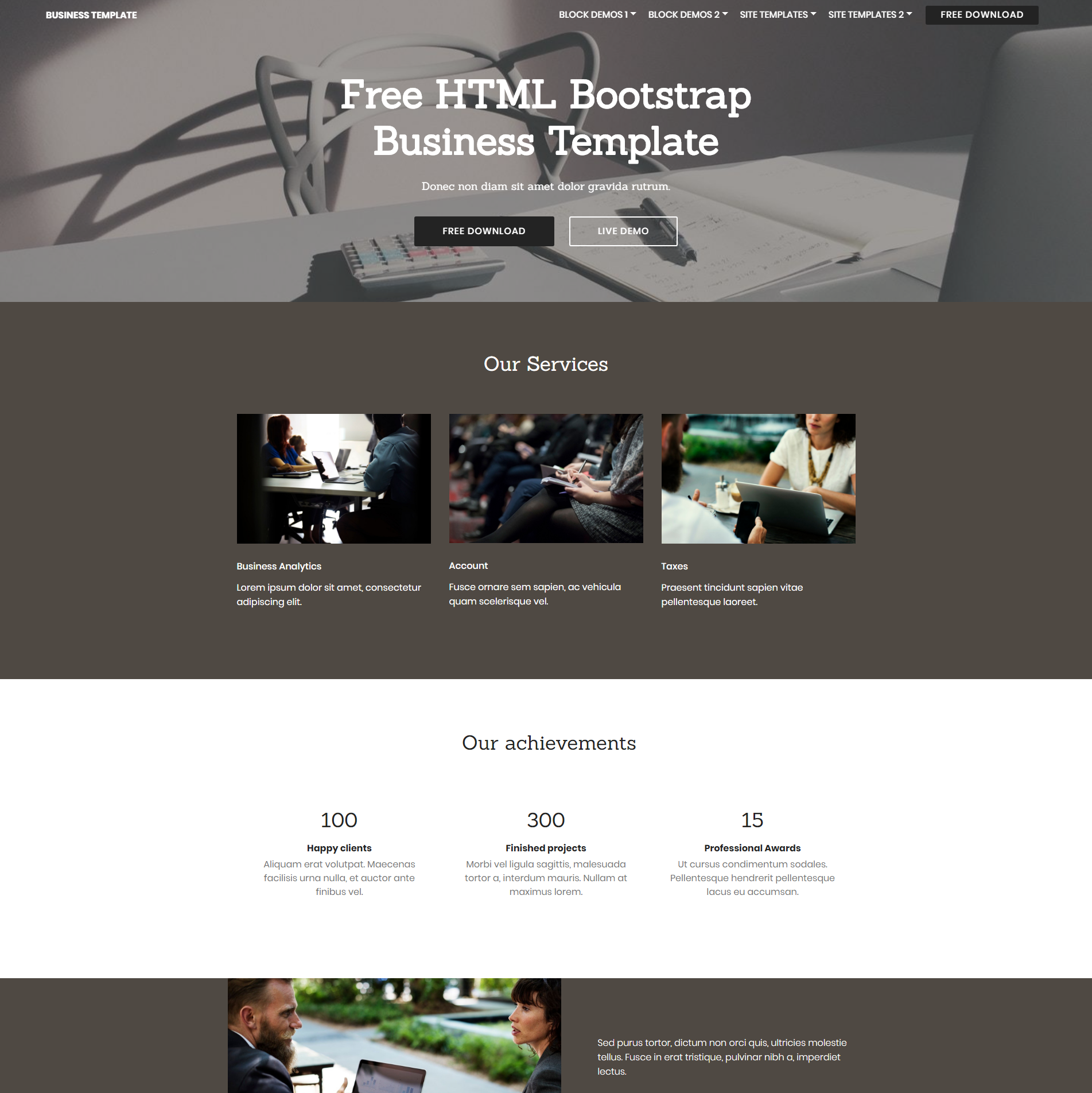 Free Download Bootstrap Busines Themes